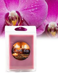 Orchid Rain 6 pack