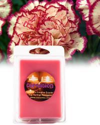 Carnation 6 pack